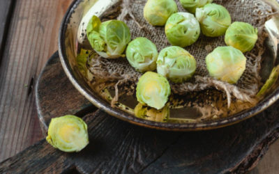 Brussel Sprout and Mushroom Fritter Recipe